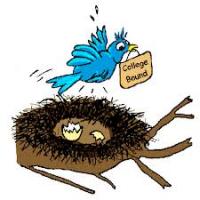 bird leaving empty nest