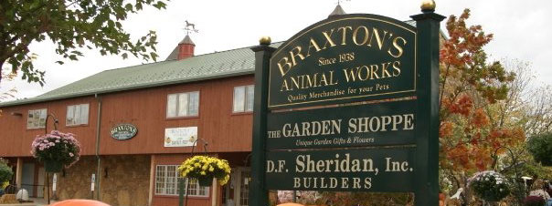 Braxton's Animal Works History
