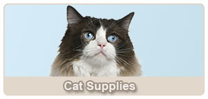 Cat Supplies