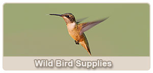 Wild Bird Supplies