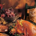 Keep Your Pets Safe and Healthy This Thanksgiving