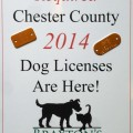 The Facts About Dog Licenses in Chester County
