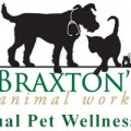 6th Annual Pet Wellness Fair in Wayne, PA