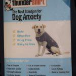 Thundershirt7702