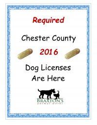 2016 dog license