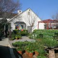 Meet Our Neighbors – The Garden Shoppe