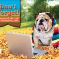 Fall Back: Will It Affect Your Pet?