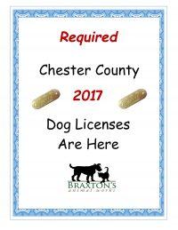 2017-dog-license