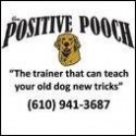 the-positive-pooch