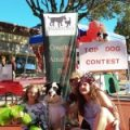Braxton's to Sponsor Top Dog Contest