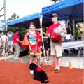 Top Dog Contest Winners