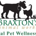 9th Annual Pet Wellness Fair Wayne, PA