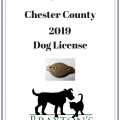 Chester County Dog License Available at Braxton's
